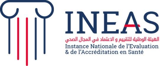 INEAS Logo